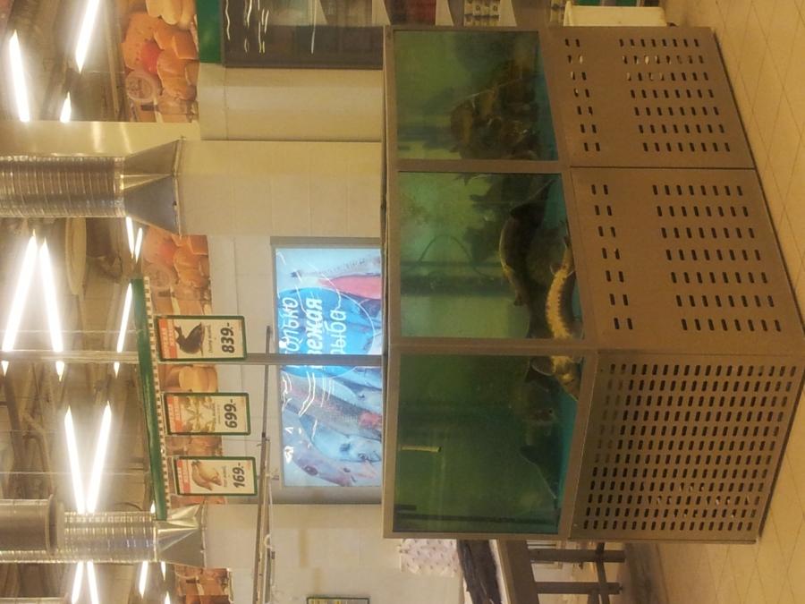 окей жалобы торгуют гнилой рыбой